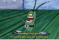 Goodbye Meme: Goodbye everyone  I'll remember you all in therapy