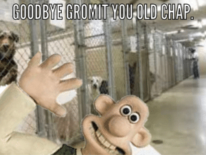 Dank Memes, Old, and Him: GOODBYE GROMIT YOU-OLD CHAP He finally let him go.