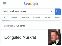 Google, News, and Videos: Google  elon musk real name  ALL NEWS IMAGES VIDEOS MAPS SHOP  Elon Musk Full name  Elongated Muskrat Never forget