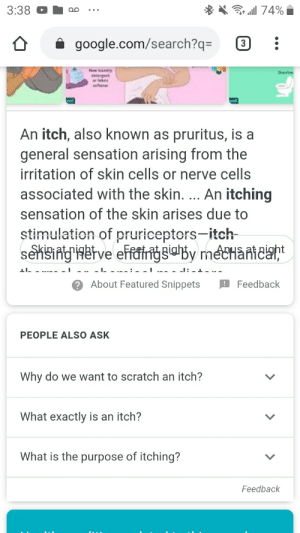 Google glitched on me while looking up what causes an itch.: Google glitched on me while looking up what causes an itch.