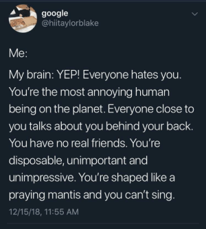 meirl by clairemt11 MORE MEMES: google  @hiitaylorblake  Me:  My brain: YEP! Everyone hates you  You're the most annoying human  being on the planet. Everyone close to  you talks about you behind your back.  You have no real friends. You're  disposable, unimportant and  unimpressive. You're shaped like a  praying mantis and you can't sing  12/15/18, 11:55 AM meirl by clairemt11 MORE MEMES