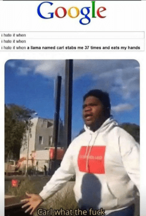 Google, Memes, and Fuck: Google  i hate it when  i hate it when  ihate it when a llama named carl stabs me 37 times and eats my hands  Carl what the fuck I just want to know who searched that via /r/memes https://ift.tt/33pVSON