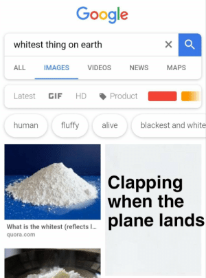 Gif, Google, and News: Google  whitest thing on earth  ALL IMAGES VIDEOS NEWS MAPS  Latest GIF HD Product  human fluffy aliveblackest and white  Clapping  when the  What is the whitest (reflects l..  quora.com Whitest substance