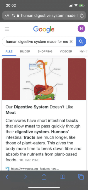 Googled: ''human digestive system made for meat''. Not surprised, Google is all in on the vegan agenda...: Googled: ''human digestive system made for meat''. Not surprised, Google is all in on the vegan agenda...
