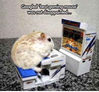 Googled best gaming mouse  was not disappointed  co No arguments here.