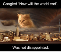 "Googled ""How will the world end""  Was not disappointed So it will end in... CATaclysm?"