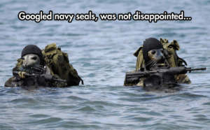 Disappointed, Tumblr, and Blog: Googled navy seals,was not disappointed... srsfunny:I Have A New Favorite Picture