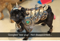 "Disappointed, Memes, and 🤖: Googled ""war pug"". Not disappointed."