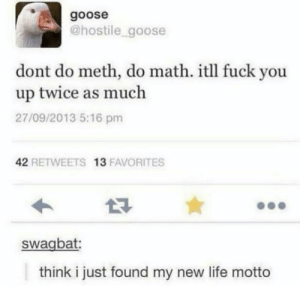 Yet we are forced it do it for years.: goose  @hostile_goose  dont do meth, do math. itll fuck you  up twice as much  27/09/2013 5:16 pm  42 RETWEETS 13 FAVORITES  swagbat:  think i just found my new life motto Yet we are forced it do it for years.