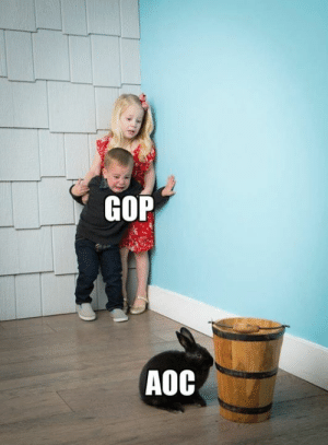 A friend of mine posted this and it could not be more true.: GOP  AOC A friend of mine posted this and it could not be more true.