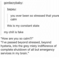 """stress https://t.co/mnE6tyomcs: gordacrybaby:  bepeu:  you ever been so stressed that youre  calm  this is my constant state  my chill is fake  """"How are you so calm?!""""  """"I've passed beyond stressed, beyond  hysteria, into the grey misty indifference of  complete shutdown of all but emergency  services in my brain  13 stress https://t.co/mnE6tyomcs"""