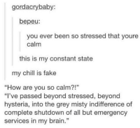 "Chill, Fake, and Brain: gordacrybaby:  bepeu:  you ever been so stressed that youre  calm  this is my constant state  my chill is fake  ""How are you so calm?!""  ""I've passed beyond stressed, beyond  hysteria, into the grey misty indifference of  complete shutdown of all but emergency  services in my brain."""
