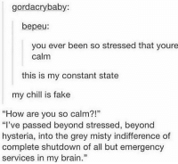 "Chill, Fake, and Memes: gordacrybaby:  bepeu:  you ever been so stressed that youre  calm  this is my constant state  my chill is fake  ""How are you so calm?!""  ""I've passed beyond stressed, beyond  hysteria, into the grey misty indifference of  complete shutdown of all but emergency  services in my brain.""  39 no chill"