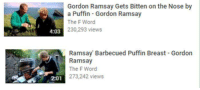 ramsay's revenge: Gordon Ramsay Gets Bitten on the Nose by  a Puffin Gordon Ramsay  The F Word  230,293 views  4:03  Ramsay Barbecued Puffin Breast Gordon  Ramsay  The F Word  2-01 273,242 views ramsay's revenge