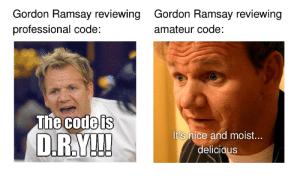 When Gordon Ramsay reviews code:: Gordon Ramsay reviewing  professional code:  Gordon Ramsay reviewing  amateur code:  The Godels  It's nice and moist...  delicious When Gordon Ramsay reviews code: