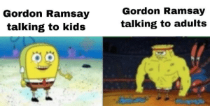 Dank, Fucking, and Gordon Ramsay: Gordon Ramsay  talking to kids  Gordon Ramsay  talking to adults ITS FUCKING RAW by JzNex MORE MEMES