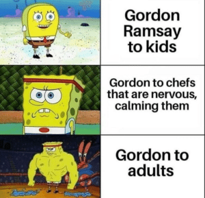 Gordon Ramsay, SpongeBob, and Kids: Gordon  Ramsay  to kids  Gordon to chefs  that are nervous,  calming them  lt  Gordon to  adultS Bring spongebob templates back