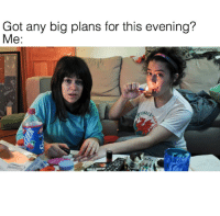 literally every day: Got any big plans for this evening?  Me:  wolfiememes literally every day