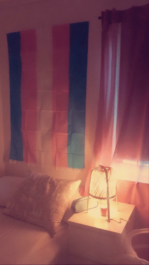 Got my first ever trans flag by my bed!!!!! I'm so happy i cant stop looking at it! ❤️ im gonna decorate it with leaves and lights soon too!!!💕: Got my first ever trans flag by my bed!!!!! I'm so happy i cant stop looking at it! ❤️ im gonna decorate it with leaves and lights soon too!!!💕