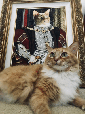 Christmas, Got, and Her: Got my gf this regal cat portrait for Christmas. I think her cat approves.