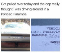 The Pontiac Harambe everyone.: Got pulled over today and the cop really  thought I was driving around ina  Pontiac Harambe  VEHICL1  tate Pennsylv  HARAMBE golor  H A R A M 13  E  OWNER The Pontiac Harambe everyone.