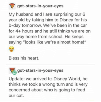 """i would also mainly be concerned about my cat: got-stars-in-your-eyes  My husband and I are surprising our 6  year old by taking him to Disney for his  b-day tomorrow. We've been in the car  for 4+ hours and he still thinks we are on  our way home from school. He keeps  saying """"looks like we're almost home!""""  Bless his heart.  got-stars-in-your-eyes  Update: we arrived to Disney World, he  thinks we took a wrong turn and is very  concerned about who is going to feed  our cat. i would also mainly be concerned about my cat"""