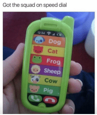 Dial: Got the squad on speed dial  12:34 ll  Dog  Cat  Frog  Sheep  Cow  Pig