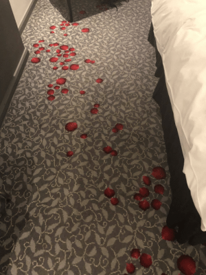 Crime, Hotel, and Thought: Got to my hotel room and thought I was staying at a recent homicide crime scene...
