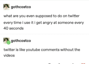 meirl: gothcostco  what are you even supposed to do on twitter  every time i use it i get angry at someone every  40 seconds  gothcostco  twitter is like youtube comments without the  videos meirl