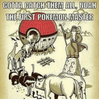 All The: GOTTA CATCH THEM ALL NOAH  THE FIRST POKEMON MASTER
