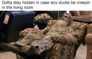 Stealth 100: Gotta stay hidden in case any ducks be creepin  in the living room Stealth 100