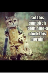 You Sumbitch: Gotthis  sumbitch  bout nine-a  clock this  mornin You Sumbitch