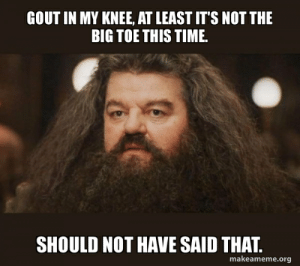 Time, Advice Animals, and Gout: GOUT IN MY KNEE, AT LEAST IT'S NOT THE  BIG TOE THIS TIME  SHOULD NOT HAVE SAID THAT.  makeameme.org Things could always get worse