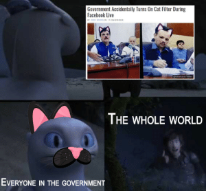 the purrfect catastrophe via /r/memes http://bit.ly/2XMNpD3: Government Accidentally Turns On Cat Filter During  Facebook Live  BY EMILY BROWwN ON 17 JUN 2019 09 08  @nailainayat/Twitter  THE WHOLE WORLD  EVERYONE IN THE GOVERNMENT the purrfect catastrophe via /r/memes http://bit.ly/2XMNpD3