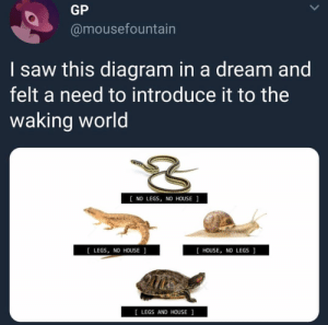 : GP  @mousefountain  I saw this diagram in a dream and  felt a need to introduce it to the  waking world  NO LEGS, NO HOUSE  [ LEGS, NO HOUSE  [ HOUSE, NO LEGS  [LEGS AND HOUSE ]