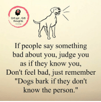 "Memes, 🤖, and Dogs Barking: Gr8 ppl Gr8  thoughts  If people say something  bad about you, judge you  as if they know you,  Don't feel bad, just remember  ""Dogs bark if they don't  know the person."" Gr8 ppl , Gr8 thoughts"