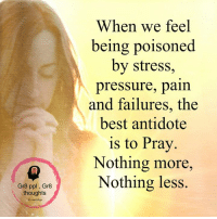 Antidote, Memes, and Pressure: Gr8 ppl Gr8  thoughts  When we feel  being poisoned  by stress,  pressure, pain  and failures, the  best antidote  is to Pray  Nothing more,  Nothing less.