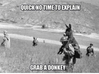 Advice, Tumblr, and Animal: GRABADONKEY advice-animal:  Military or (Insert Job Title Here)