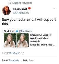 Blackpeopletwitter, Fire, and Saw: Grace Ho Retweeted  RoseGawd  @lunasluvchild  Saw your last name. I will support  this.  Bindi Irwin Φ @BindiIrwin  Some days you just  need to cuddle a  tarantula...  Meet this sweetheart...  1:09 PM-25 Jun 17  78.4K Retweets 224K Likes <p>Kill it with fire. (via /r/BlackPeopleTwitter)</p>