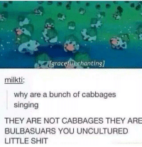Check out Kook Life: [graceful chanting]  milkti:  why are a bunch of cabbages  singing  THEY ARE NOT CABBAGES THEY ARE  BULBASUARS YOU UNCULTURED  LITTLE SHIT Check out Kook Life