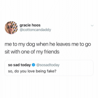 When I say ladies it means everyone ok.: gracie hoos  @cottoncandaddy  me to my dog when he leaves me to go  sit with one of my friends  so sad today@sosadtoday  so, do you love being fake? When I say ladies it means everyone ok.