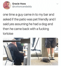 Fucking, Memes, and Time: Gracie Hoos  @cottoncandaddy  one time a guy came in to my bar and  asked if the patio was pet friendly and l  said yes assuming he had a dog and  then he came back with a fucking  tortoise 🤣Legendary