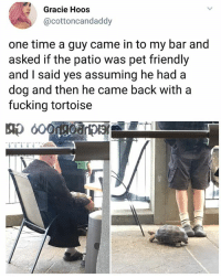 Fucking, Memes, and Time: Gracie Hoos  @cottoncandaddy  one time a guy came in to my bar and  asked if the patio was pet friendly  and I said yes assuming he had a  dog and then he came back with a  fucking tortoise Boss