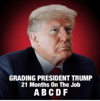 grading: GRADING PRESIDENT TRUMP  21 Months On The Job  ABC DF