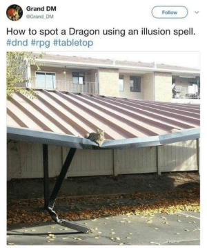 How To, DnD, and Grand: Grand DM  @Grand DM  Follow  How to spot a Dragon using an illusion spell  The dragon is compromised