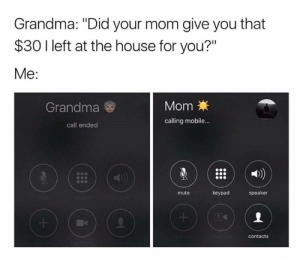 """Grandma, Money, and Call Ended: Grandma: """"Did your mom give you that  $30 I left at the house for you?""""  Me:  Grandma  MomX  calling mobile...  call ended  1)  mute  keypad  speaker  contacts Mooooom! Where's my money!"""