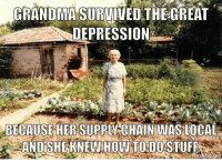 Grandma, Memes, and True: GRANDMA SURVIVED THE GREAT  DEPRESSION  BECAUSE HER SUPPLY CHAIN WAS LOCAL  AND SHE KNEW How TODO STUFF So true: