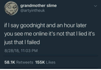 MeIRL, Online, and Slime: grandmother slime  @artyintheuk  if I say goodnight and an hour later  you see me online it's not that I lied it's  just that I failed  8/28/18, 11:03 PM  58.1K Retweets 155K Likes meirl