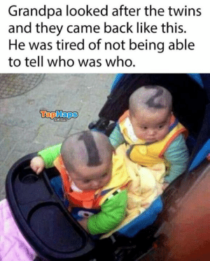 Memes, Twins, and Grandpa: Grandpa looked after the twins  and they came back like this.  He was tired of not being able  to tell who was who.  TapHaps