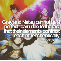 Anime, Facts, and Naruto: Gray and Natsucannotbea  team dueto thefact  attheirelements contrast  each otherchemically.  @eve anime: fairy tail - sigh facts r fun to make um btw this was stated by hiro mashima and its on amino :> - onepiece anime animememes animeedit animelover fairytail blackbutler blueexorcist tokyoghoul attackontitan deathnote hunterxhunter narutoshippuden naruto noragami onepunchman haikyuu kurokonobasket thesevendeadlysins owarinoseraph animefacts yurionice swordartonline mysticmessenger 👀 assassinationclassroom iloveanime animeworld weeb